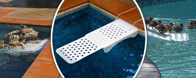 Rampe de sauvetage piscine SKAMPER RAMP pour chiens et chats - SKAMPER RAMP Sauver vos animaux de la noyade