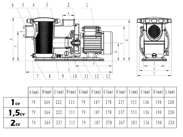 pompe filtration piscine gr pp100 d bit 12m3 h puissance 1cv sur march. Black Bedroom Furniture Sets. Home Design Ideas