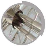 Enrouleur ligne de nage Inox 120 cm HEXAGONE - Avantage de l'enrouleur ligne de nage HEXAGONE