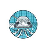Robot piscine electrique Dolphin M5 BIO - Robot piscine électrique Dolphin M5 BIO  Performance et confort d'utilisation