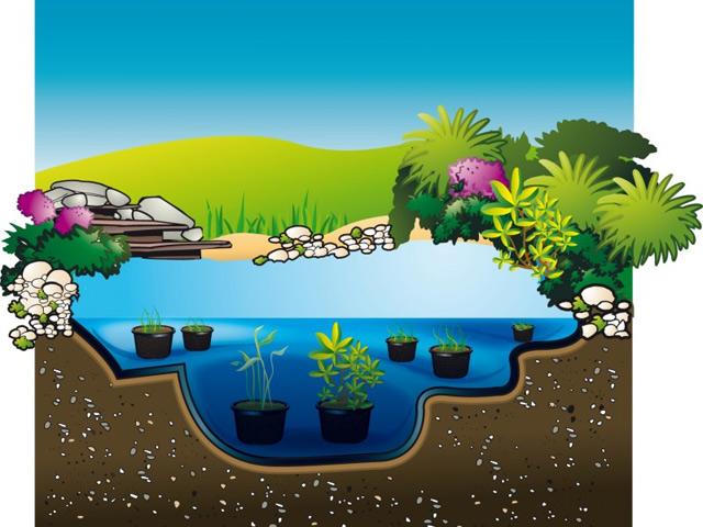 Bache de bassins de jardin AQUAFLEXILINER Ubbink 5,05x7,50m ep.0,6mm - Installation d'un bassin de jardin en bâche AQUAFLEXILINER Ubbink 5,05x7,50m ép 0,6mm
